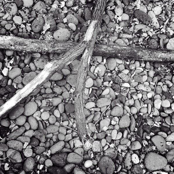 winter wood2018-08-19_07-20-31-0700.jpg