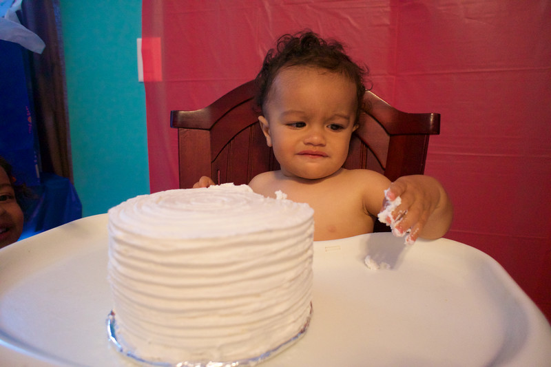LINCOLN 1st BIRTHDAY PARTY_ 99.jpg