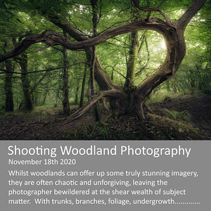 Shooting Woodlands