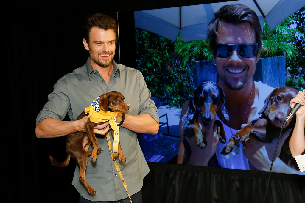 """. Actor Josh Duhamel holds a resuce dog named Charlie while he and Boston Red Sox baseball player David Ortiz, not pictured, helps launch Pedigree Brand\'s \""""See what good food can do.\"""" documentary-style campaign to help shelter dogs during the 2014 Sundance Film Festival, on Monday, Jan. 20, 2014 in Park City, Utah. (Photo by Danny Moloshok/Invision/AP)"""