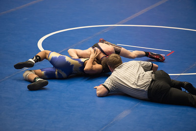 Wrestling Regions