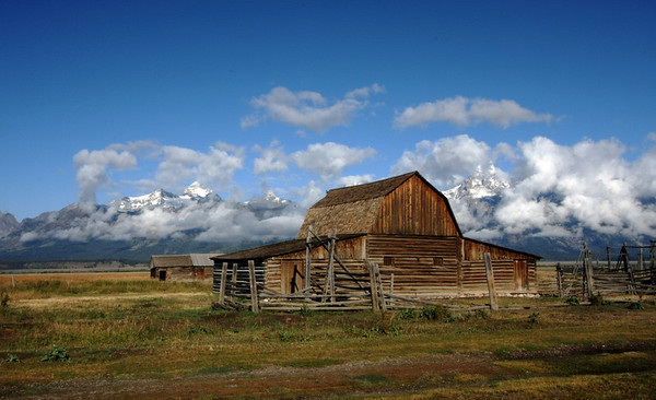 Grand Teton and Yellowstone 2008