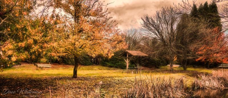 Bowral Park in Autumn