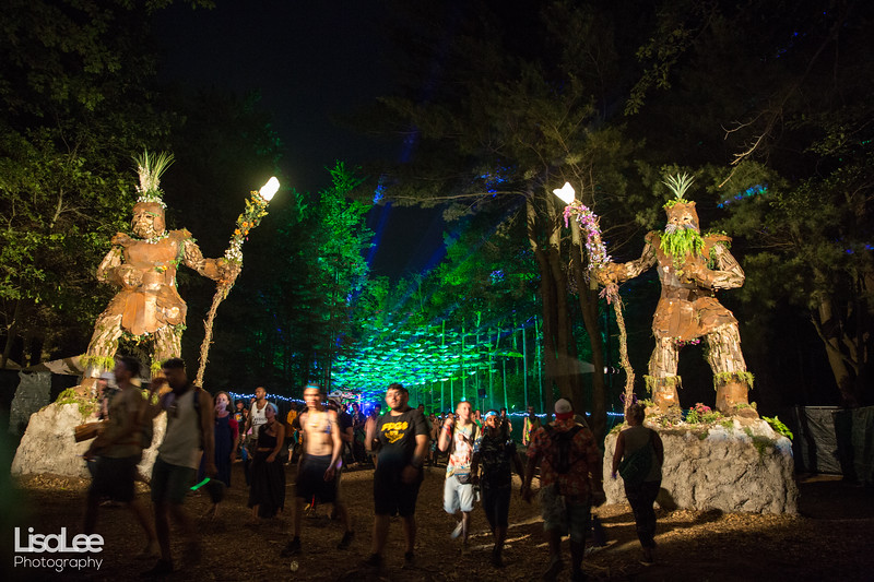 2018-06-30_ElectricForest_12.jpg