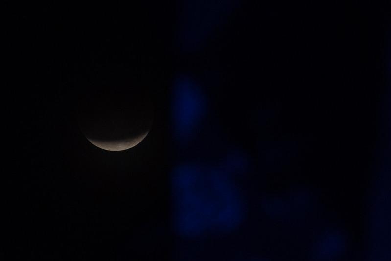 2018_0131-Moon-8038.jpg