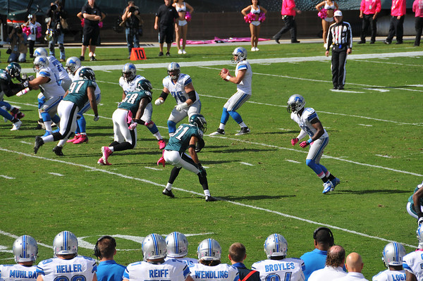 Eagles vs Lions 2012