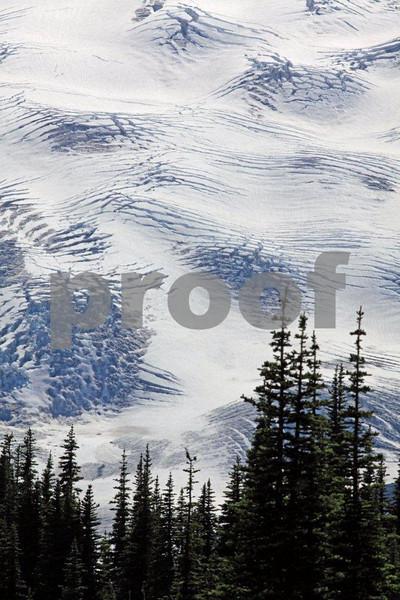 Mt. Rainier Emmons  Glacier 9676.jpg