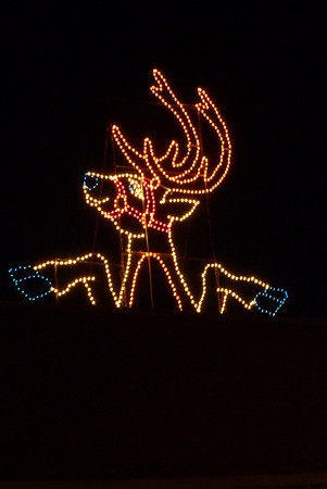 12-22 - Lights of Life - Marietta, GA
