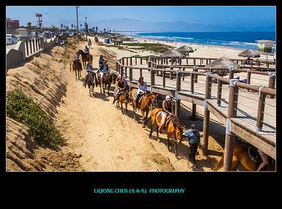 10-31-2016 骑马遛海滩-感觉非常的好