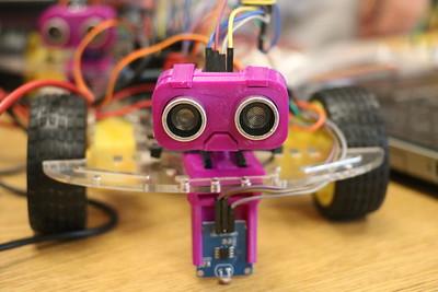 Summer Campus Sumo Robots 6-26-19