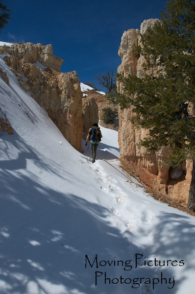 Bryce Canyon National Park - Fairyland Loop Trail - 35 degrees and time for short sleeves
