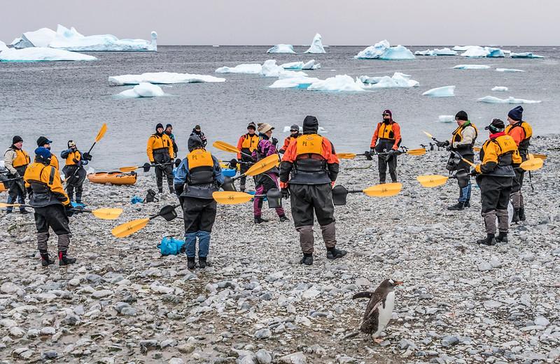 Kayaking_Cuverville Island_Antarctic Peninsula-2.jpg