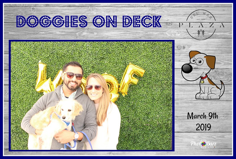 Doggys on Deck33.jpg