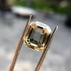 4.94ct Cushion Emerald Cut Diamond, GIA 13