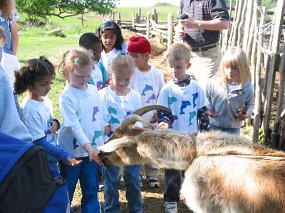 2005 Allison on the farm