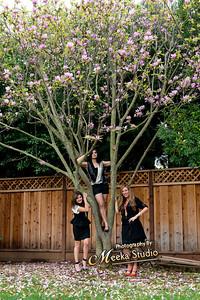 Steel Magnolia Evevts
