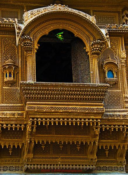 INDIA2010-0208A-395A.jpg