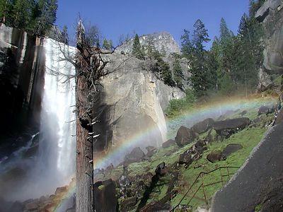 Yosemite Highlights