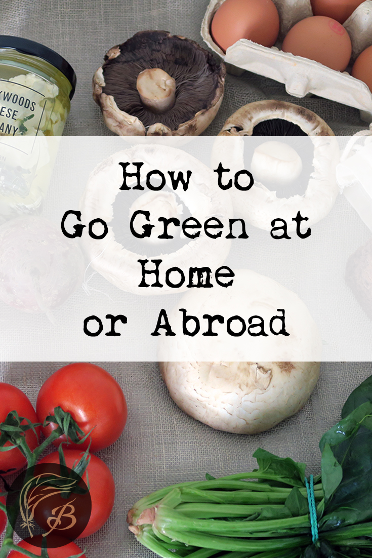 Here's 11 tips for helping you live a greener existence, whether that be in your home country, or as an expat living overseas.
