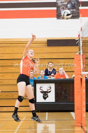 Buckeye Volleyball 2016