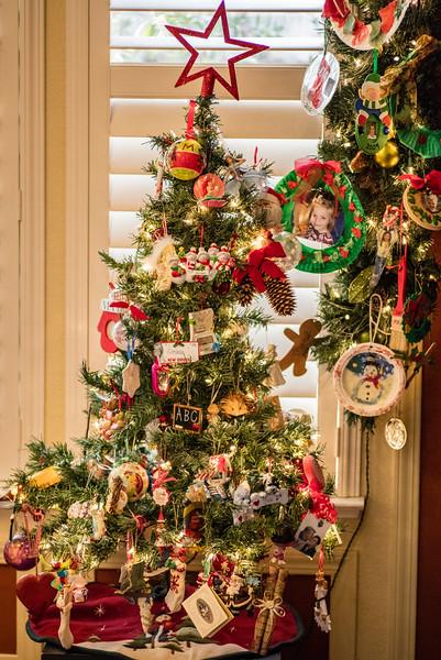 11-15-30_December 25, 2016_44460.jpg