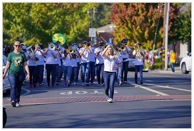 Danville Homecoming Parade 2017