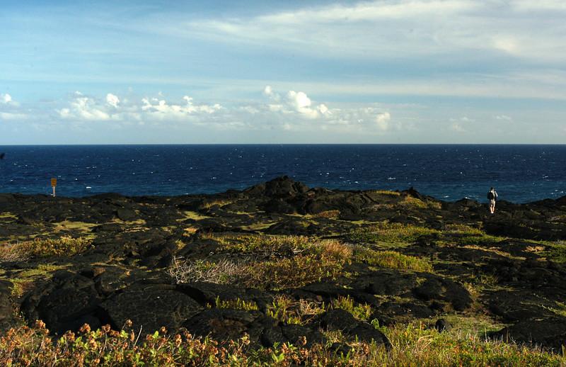269- 20080412- Hawaii 15- Volcano Nat'l Park DSC_3141.jpg