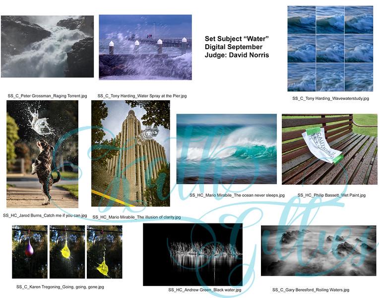 9 water digital.jpg