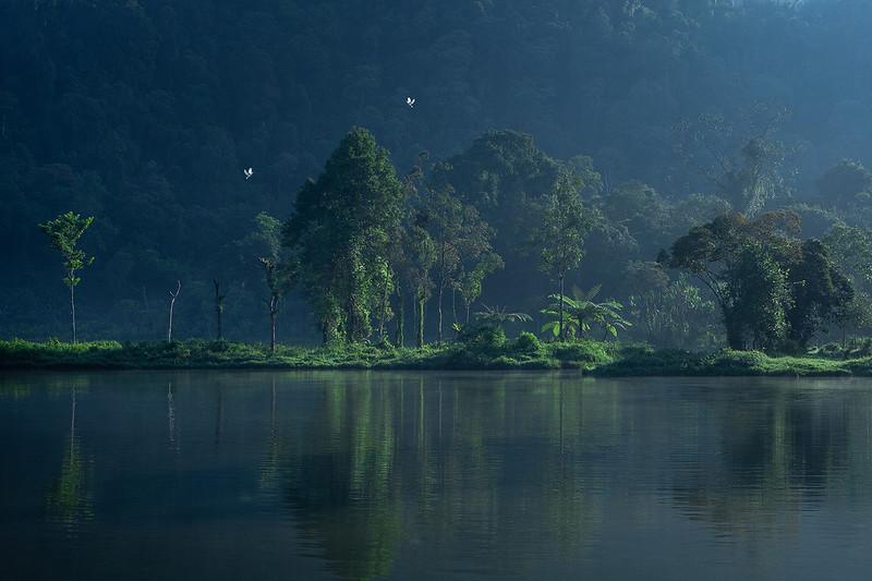 MCC4 Roy Sabay The Lake.jpg