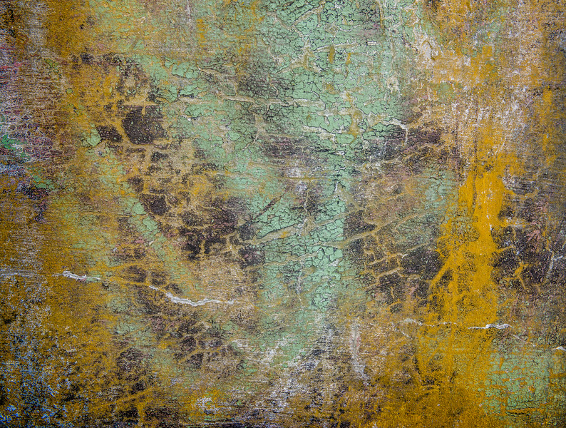Abstract Lichen.jpg