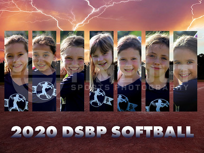 2020 DSBP Coach Pitch Dark Blue