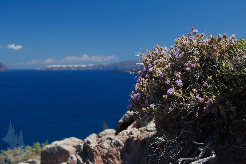 Looking north across the caldera of the volcano that formed Santorini