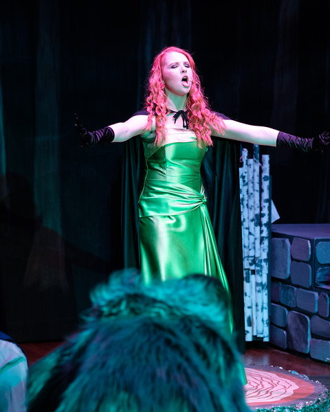 2018-03 Into the Woods Performance 0879.jpg