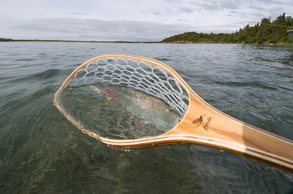 Brodin Alaska Project