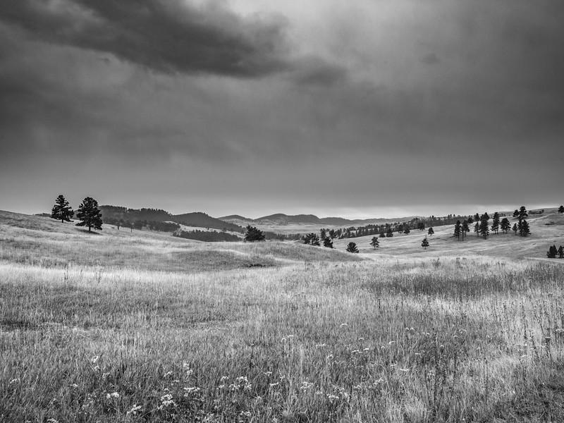 Wide Prairie   Black & White Photography by Wayne Heim
