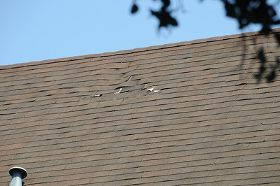 183 Bryant - Roof and Gutter