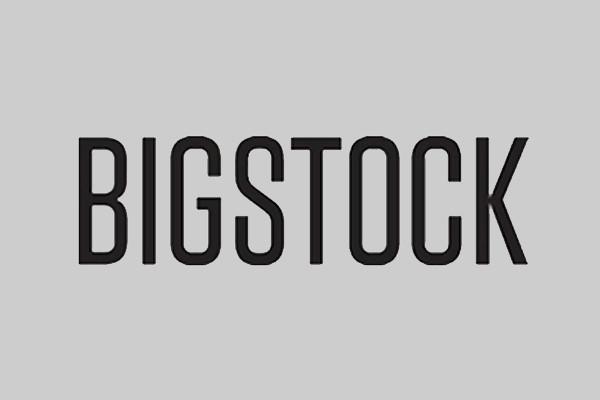 logo bigstock.jpg