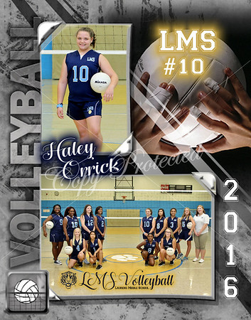 LMS Volleyball