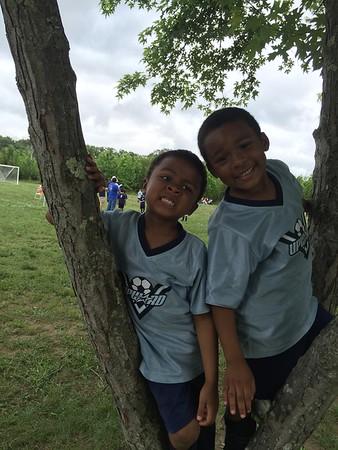 2016-06-02_PHCA Field Day