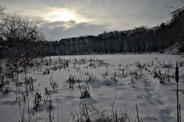 RBG Winter15