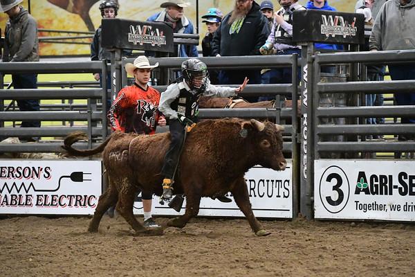 Bull Riding School/Bull Figihting School - Feb. 27