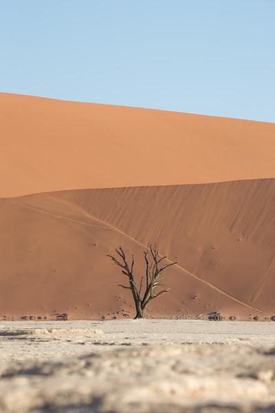 Namibia Baby-123.jpg