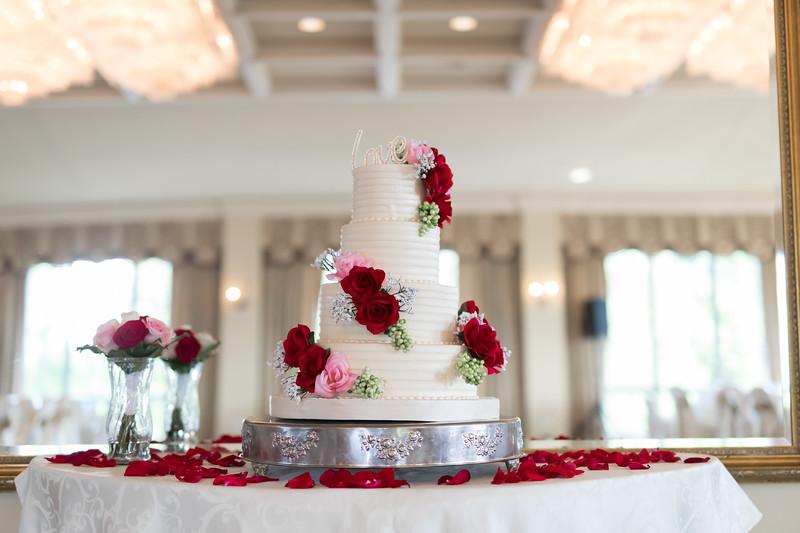Houston Wedding Photography ~ Norma and Abe-1310.jpg