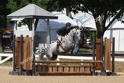 2012 Robert Murphy Horse Show