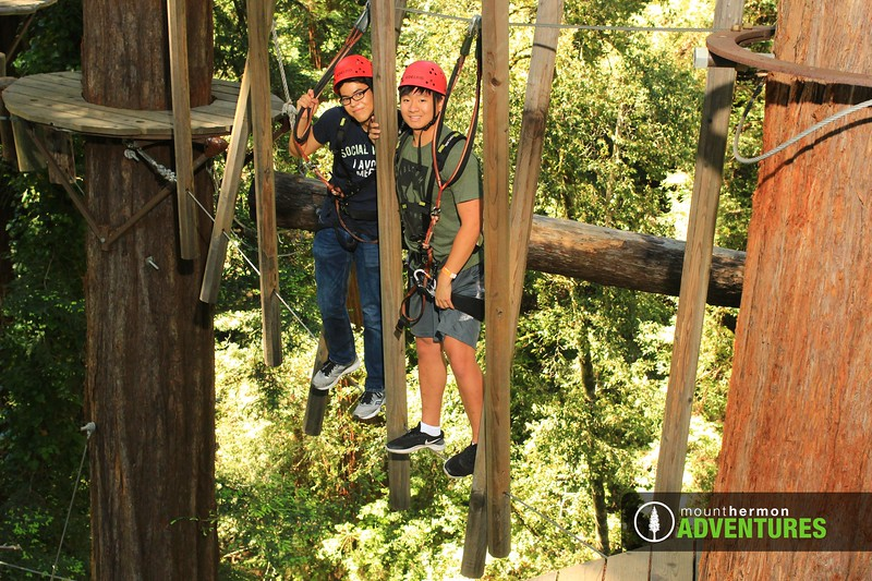 sequoiaportrait_1559083382861.jpg