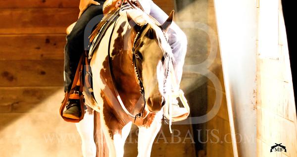 IPHC Horse Show