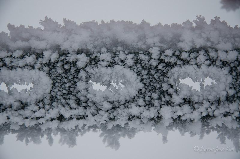 USA-Alaska-Arctic-Circle-2492.jpg