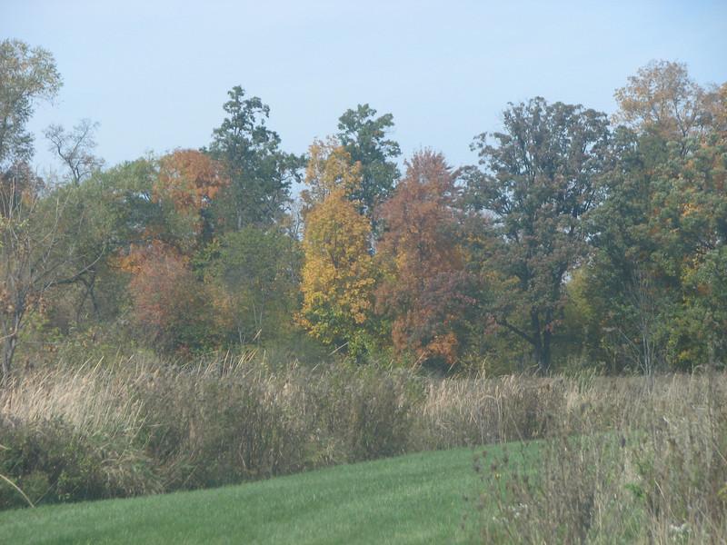 Fall pics 2008 018.jpg