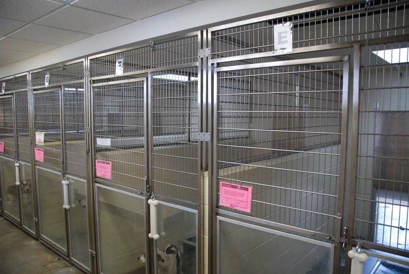 Kentucky Humane Society 2010 001.jpg