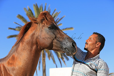 17.06.2013 Djerba 2013